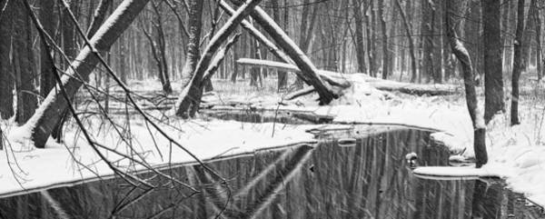 Photograph - A Black And White Panoramic Photo Of A Stream In A Winter Snow Storm by Randall Nyhof