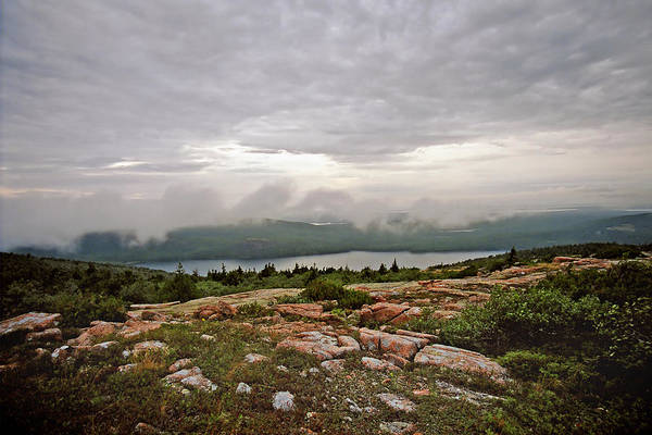 Photograph - A Cloudy Mist by Joann Vitali