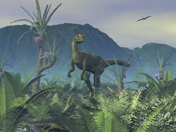 Paleobotany Digital Art - A Colorful Adult Male Dilophosaurus by Walter Myers
