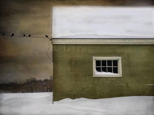 Photograph - A Common Thread by Robin-Lee Vieira