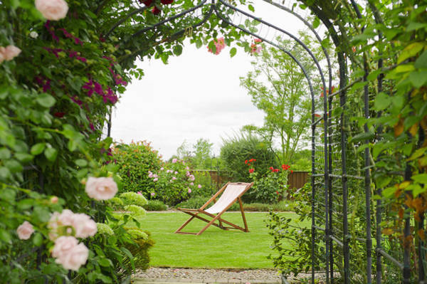 Wall Art - Photograph - A Country Garden With A Rose Arch by Dave and Les Jacobs