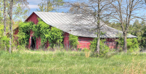 Photograph - A Country Spring by JC Findley