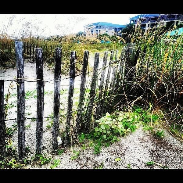 Beach Wall Art - Photograph - A Day At The Beach. by Lea Ward