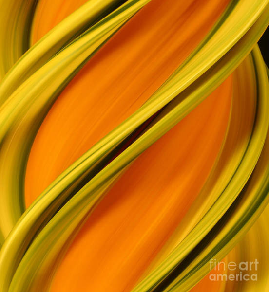 Photograph - A Digital Streak Image Of A Squash by Ted Kinsman