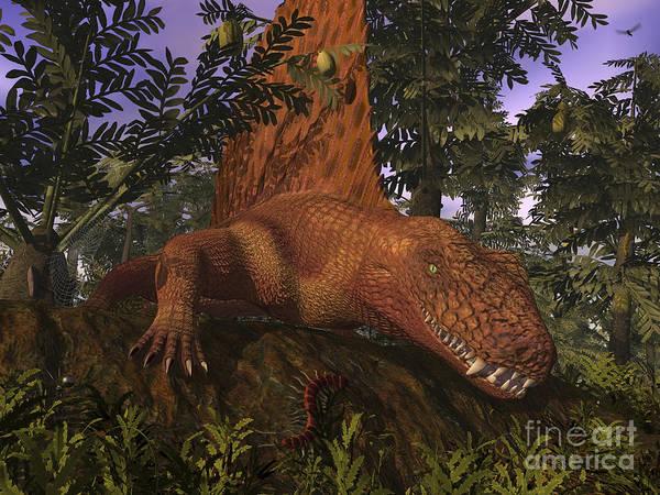 Paleobotany Digital Art - A Dimetrodon Amongst Alethopteris Ferns by Walter Myers
