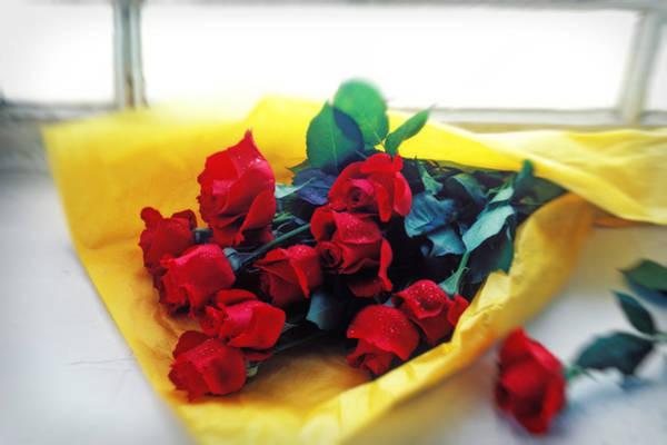 Wall Art - Photograph - A Dozen Red Roses by Garry Gay