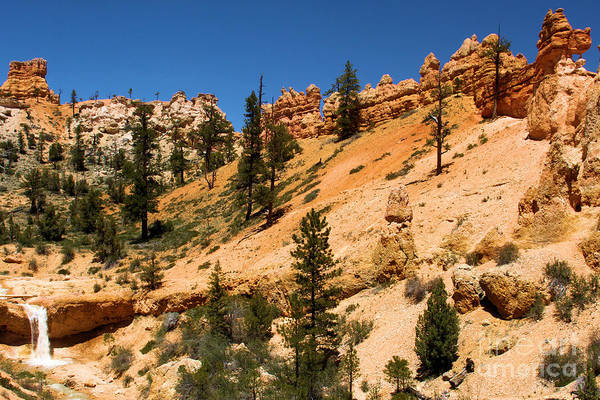 Photograph - A Dragon Over Water Canyon by Adam Jewell