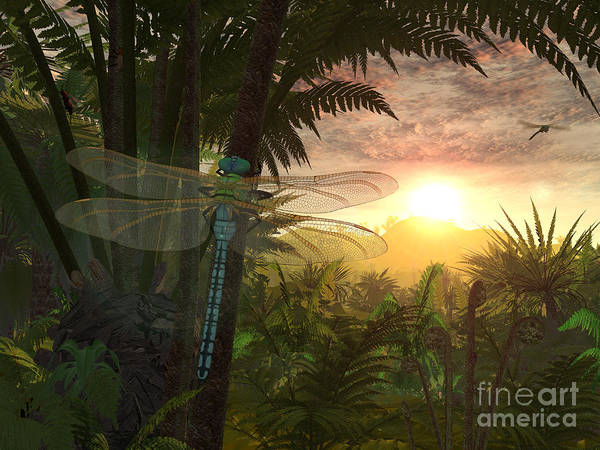 Paleobotany Digital Art - A Giant Meganeura With A 30-inch by Walter Myers