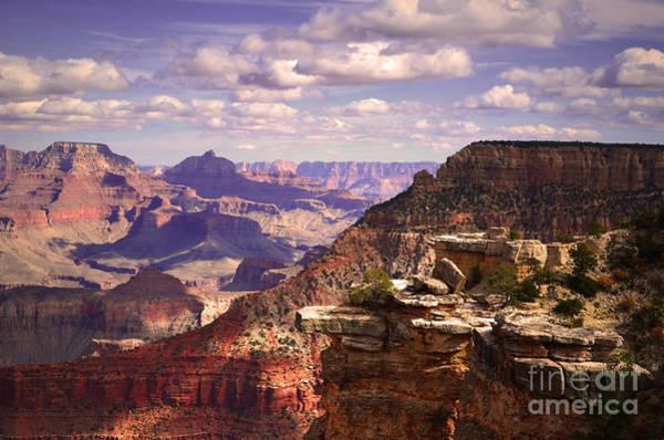 Photograph - A Grand View by Tara Turner