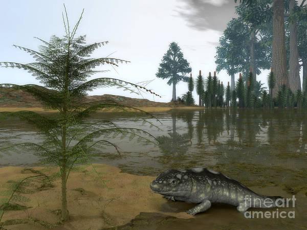 Paleobotany Digital Art - A Late Devonian Ichthyostega Emerges by Walter Myers
