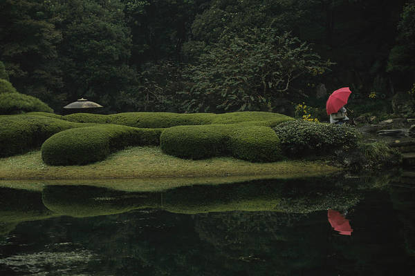 Wall Art - Photograph - A Lone Person Sits In A Garden by Justin Guariglia