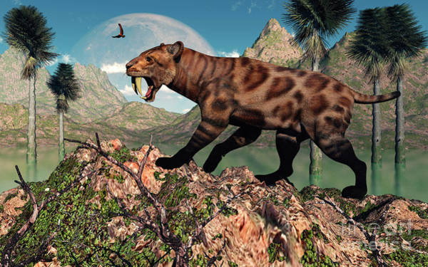 Smilodon Wall Art - Digital Art - A Lone Sabre-toothed Tiger by Mark Stevenson