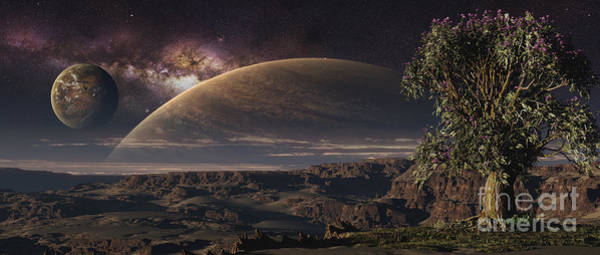 Cosmology Digital Art - A Lonely Tree On An Extraterrestrial by Frieso Hoevelkamp