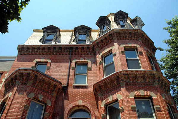 Photograph - A Mansard Roof Through The Trees by Walter Neal