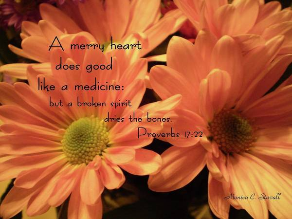 Photograph - A Merry Heart Does Good Like A Medicine... by Monica C Stovall