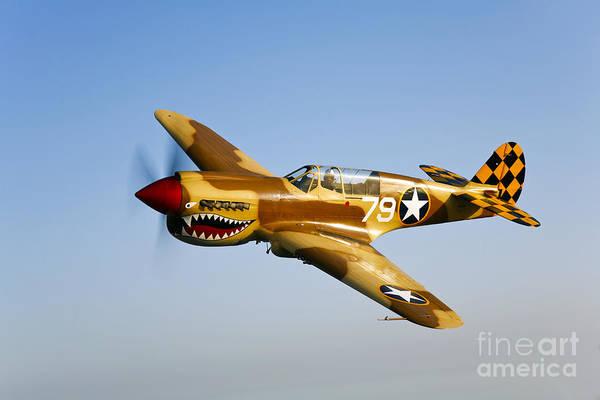 Photograph - A P-40n Warhawk In Flight by Scott Germain