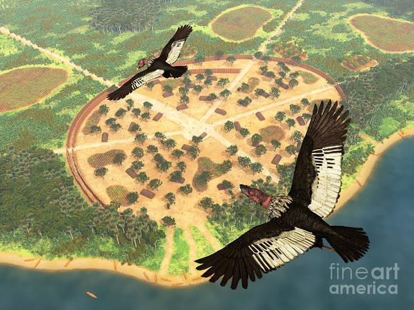 Aerial View Digital Art - A Pair Of Andean Condors Fly Over An by Walter Myers