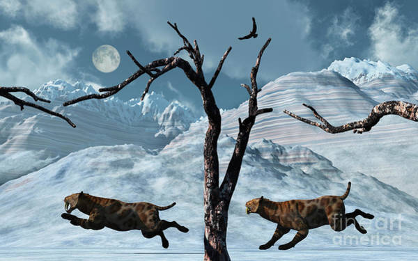 Smilodon Wall Art - Digital Art - A Pair Of Sabre-toothed Tigers Giving by Mark Stevenson