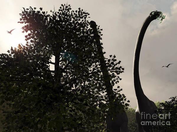 Paleobotany Digital Art - A Pair Of Sauroposeidon Feed by Walter Myers