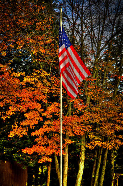 Photograph - A Patriotic Autumn by David Patterson