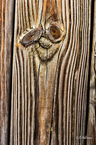 Photograph - A Plank Face by Christopher Holmes