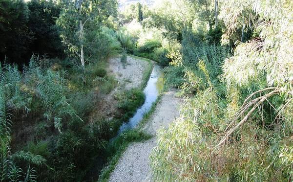 Photograph - A River Runs Thru It In Olympia Greece by John Shiron