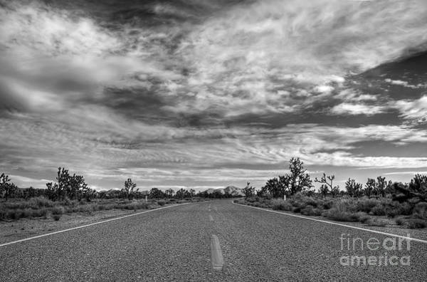 Photograph - A Road Through The Mojave National Preserve by Eddie Yerkish