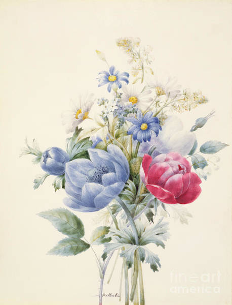 Wall Art - Painting - A Rose Anemone Mignonette And Daisies by Nathalie d Esmenard