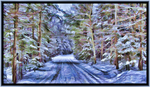 Photograph - A Rural Road In A Magical And Haunted Forestscape After A Snowfall In Canada by Chantal PhotoPix