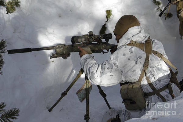 Photograph - A Scout Sniper Prepares His Shot by Stocktrek Images