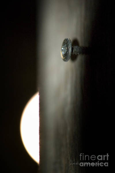 Photograph - A Screw On A Pole By Moonlight  by Vicki Ferrari