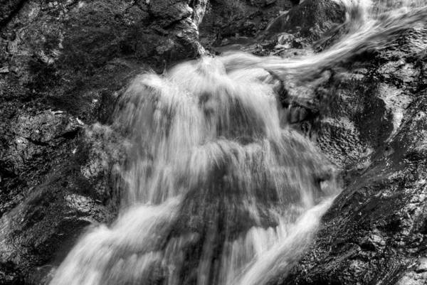 Photograph - A Splash Of Water by Dennis Dame