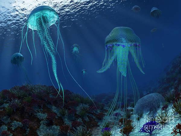 Paleobotany Digital Art - A Swarm Of Jellyfish Swim by Walter Myers