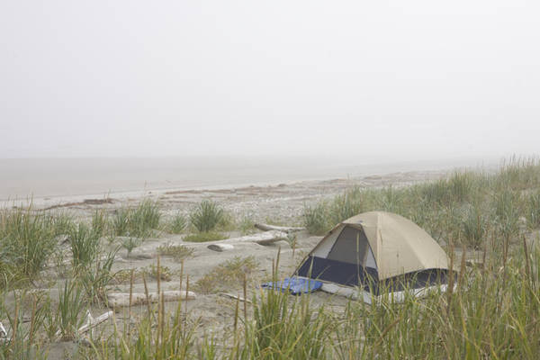 Queen Charlotte Islands Wall Art - Photograph - A Tent Sits In The Dunes By The Beach by Taylor S. Kennedy