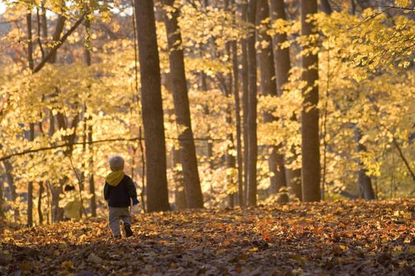 Chesapeake And Ohio Wall Art - Photograph - A Three Year Old Boy Walks by Skip Brown