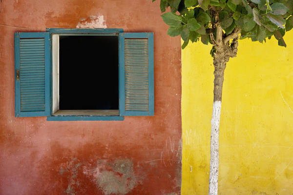 Dakar Photograph - A Tree Outside A Colorful Building And by David DuChemin