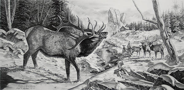 Elk Mountain Drawing - A Voice In The Wilderness by Virgil Stephens