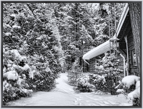 Photograph - A Winter Path In The Woods - A Secluded Country Cottage In The Forest After A Canadian Snowstorm by Chantal PhotoPix