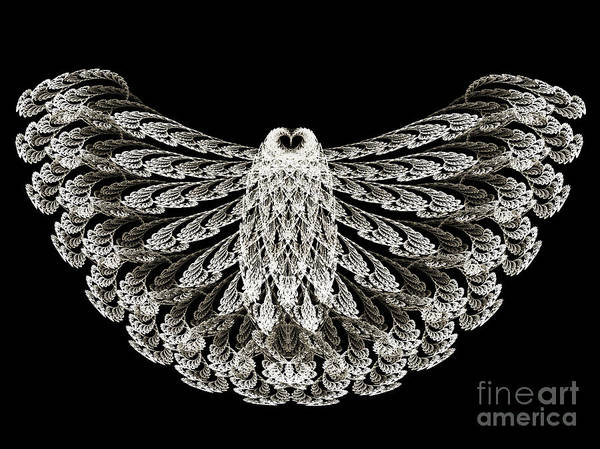 Bird In Flight Digital Art - A Wise Old Owl by Andee Design
