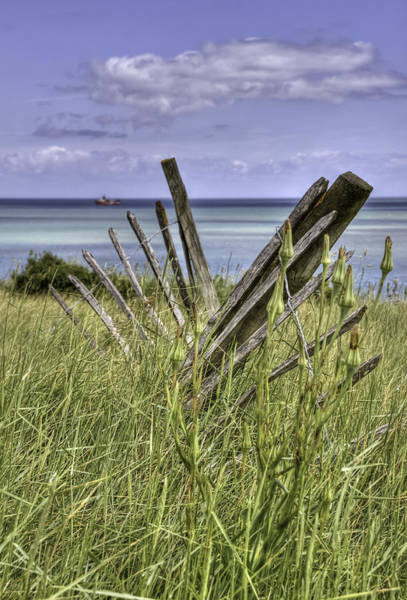 Windswept Photograph - Abandoned Fence by Nigel Jones