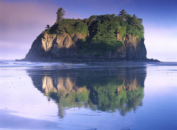 Photograph - Abbey Island Looms Over Ruby Beach by Tim Fitzharris