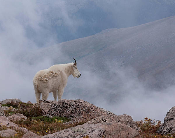 Photograph - Above The Clouds by Jim Garrison
