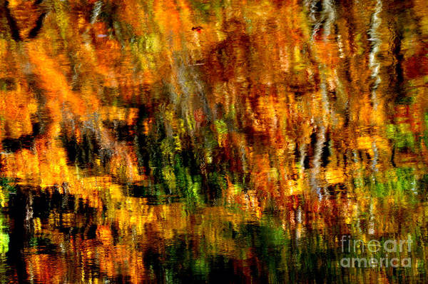 Photograph - Abstract Babcock State Park by Thomas R Fletcher