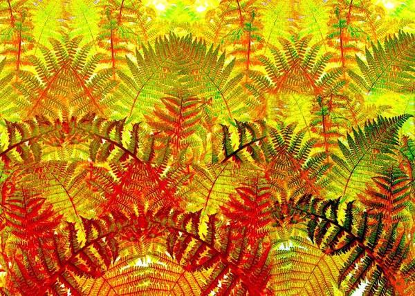 Borden Digital Art - Abstract Fusion 23 by Will Borden