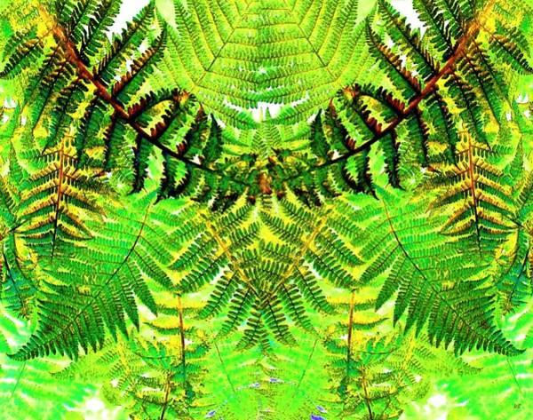 Borden Digital Art - Abstract Fusion 30 by Will Borden
