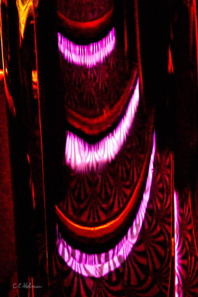 Photograph - Abstract Magentas by Christopher Holmes