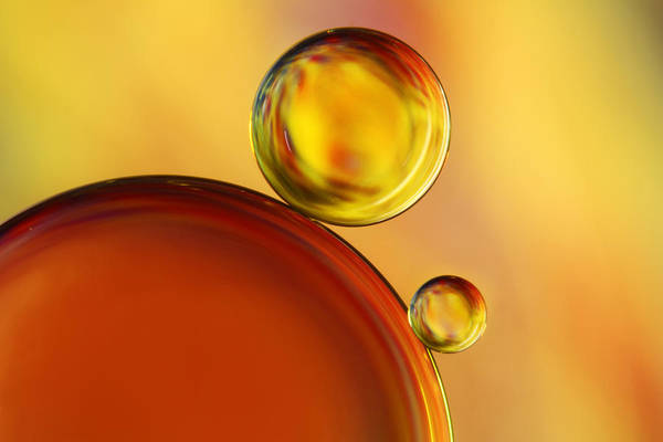 Golden Circle Photograph - Abstract Oil Drops by Sharon Johnstone