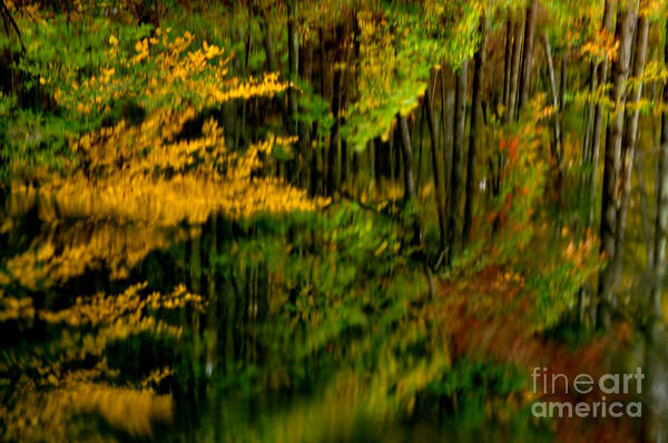 Photograph - Abstract Reflections by Thomas R Fletcher