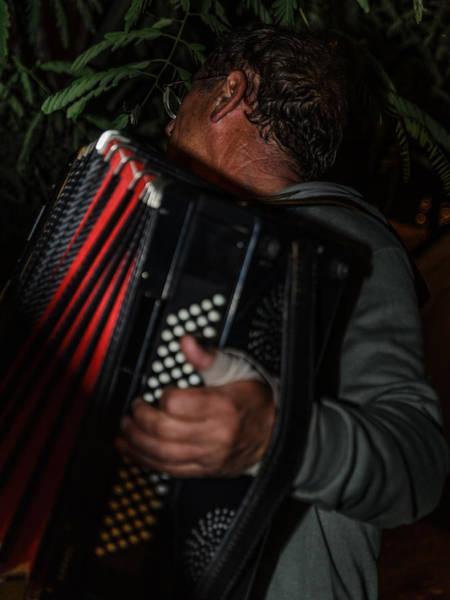 Photograph - Accordionist by Michael Goyberg