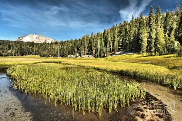 Photograph - Across The Meadow by Adam Jewell